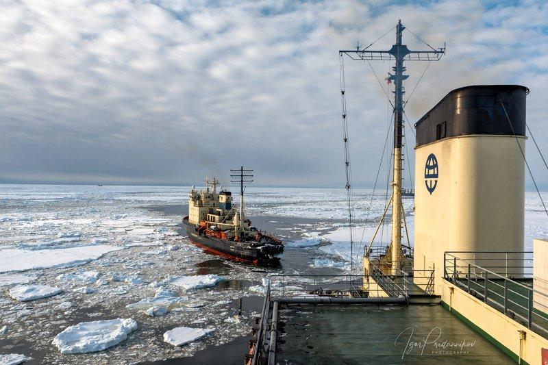море, белое, ледоколы, суда, арктика Два ледоколаphoto preview