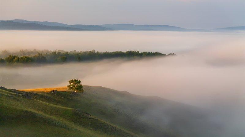 утро, рассвет, восход, туман, лучи Туманное мореphoto preview