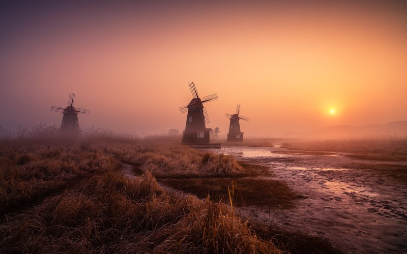 windmill calm morning fog foggy light landscape korea The land of the morning calmphoto preview