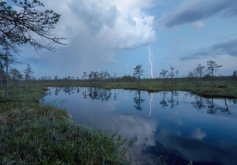 гроза, болото, молния, ленинградскаяобласть ,карелия Ночная гроза над болотомphoto preview