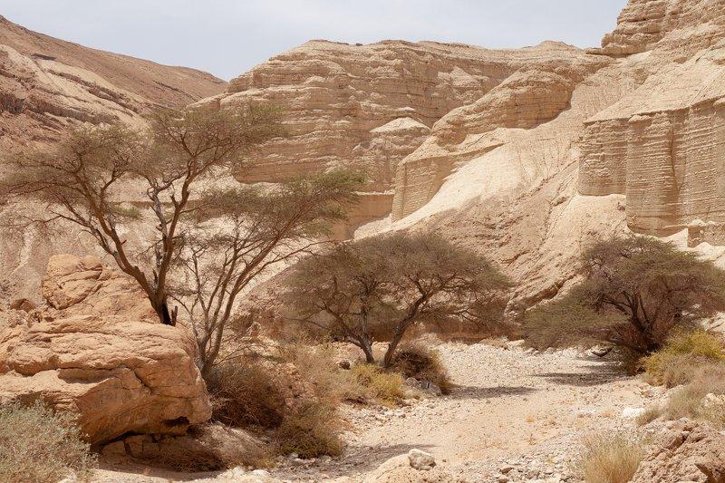israel, zohar bridge. ***photo preview