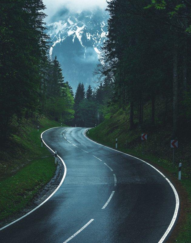 Дорога, лес, горыphoto preview