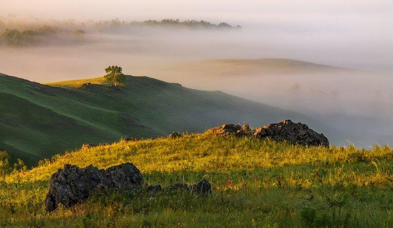 утро, рассвет, восход, туман, лучи Иной ракурсphoto preview