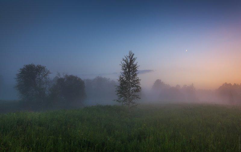 Белая ночьphoto preview