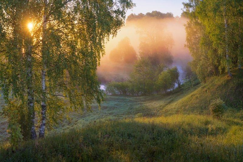 туман, лето, река Фрагменты туманного рассветаphoto preview