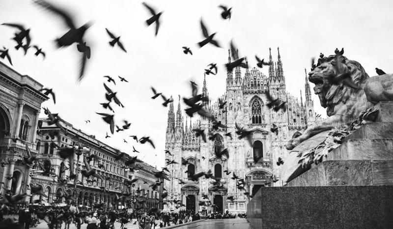 #street #Milan #urban Жизньphoto preview