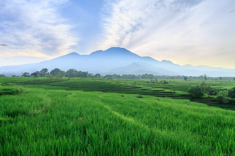 nature, landscape, indonesia, asia, mountain morning beauty fileds in north bengkuluphoto preview