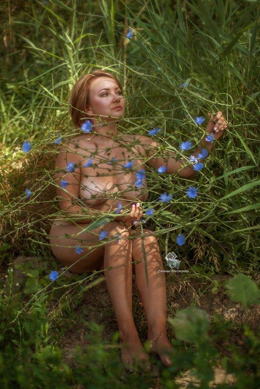 art nu,  photo, photography, eroticism, sexual, artistic erotica, girl, naked body, nude, nu, топлес, фотохудожники, художественная фотография, ретушь, эротика, ню, обнажённое тело, сексуальность, фотосессии в краснодаре Цикорийphoto preview