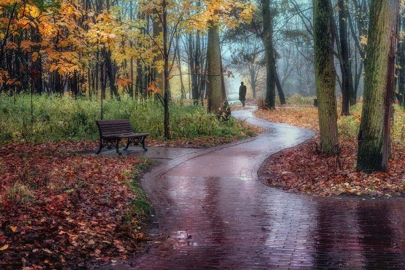 осень, дождь, одинокий, прохожий, парк, уныние, одиночество Всюду осеньphoto preview
