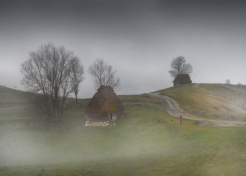 Румынияphoto preview