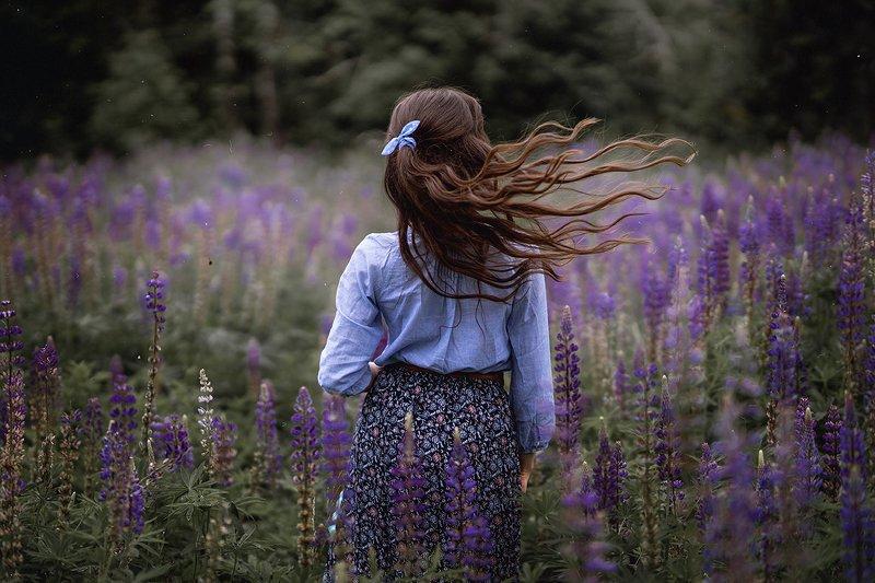 лето, девушка, люпин, автопортрет Цветение люпиновphoto preview