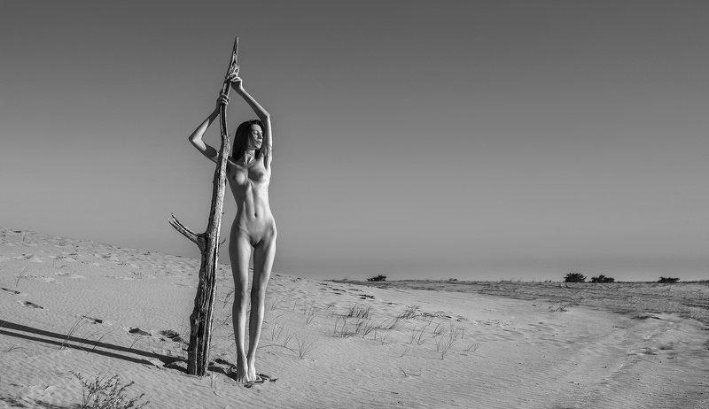 Пустынная-2photo preview