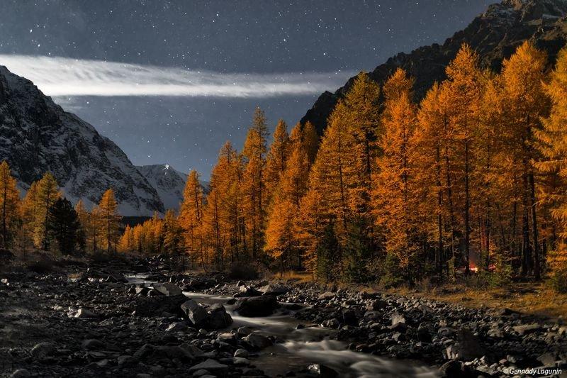 алтай, altai, осень, autumn, горы, mountains, night, ночь Время считать звёзды фото превью