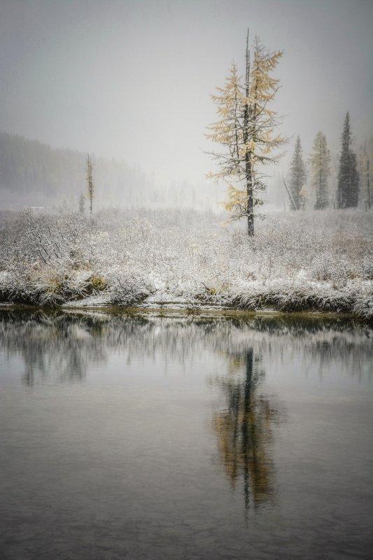 алтай,зима аритмияphoto preview