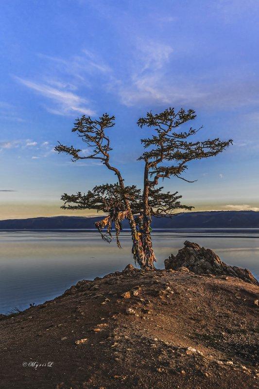 утро, восход, пейзаж, отражение, озеро, Байкал, зори Утренний светphoto preview