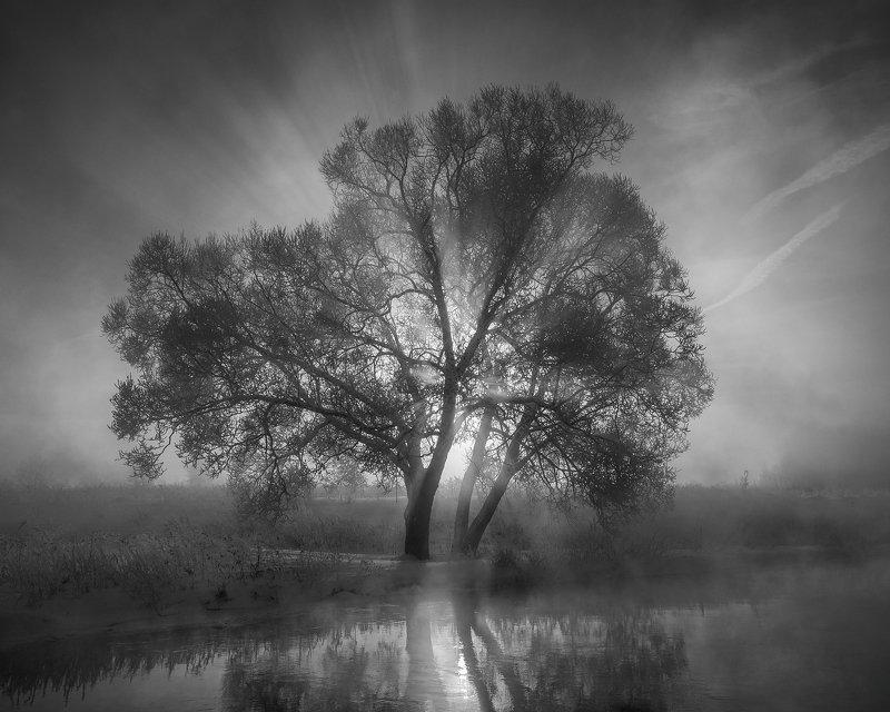 Черно-белый рассвет фото превью