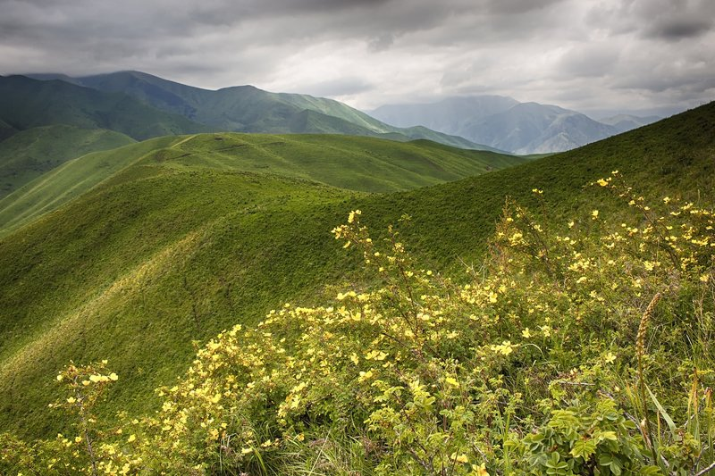 кыргызстан, горы Палитра хмурого дняphoto preview
