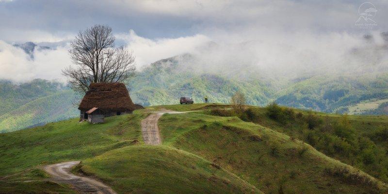 пейзаж, природа, горы, румыния, туман \