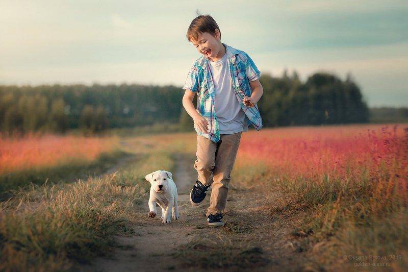 собака, мальчик, ребенок, собака, щенок, аргентинский дог, поле, движение, солнце, лето, розовый, счастье, дружба, смех, бег Вперед!photo preview