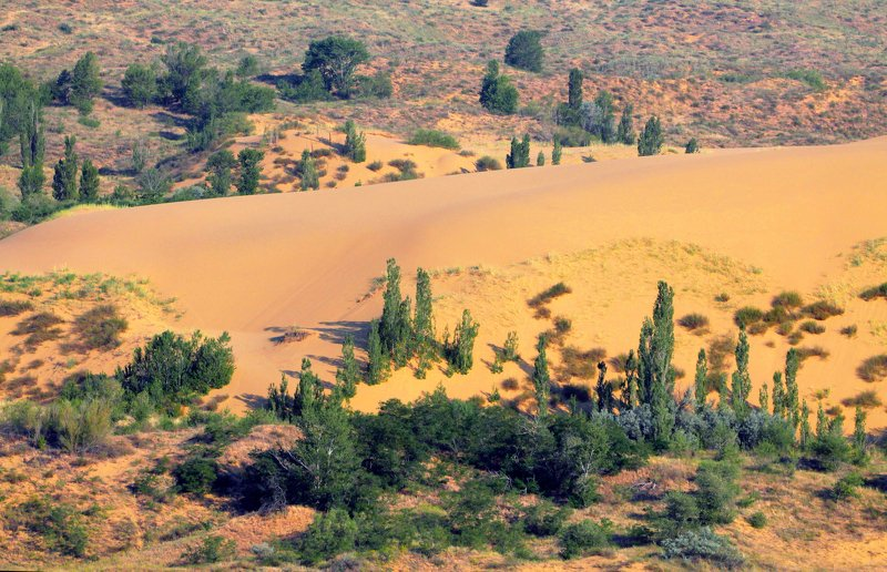 сары кум,песок,гора.природа,пустыня,дагестан. Сары кум.. (Жёлтые пески..)photo preview