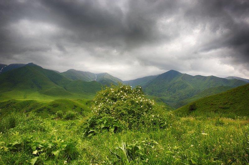 кыргызстан, горы Минуты до дождя...photo preview
