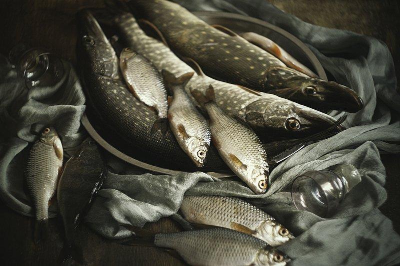 натюрморт, рыба, много photo preview