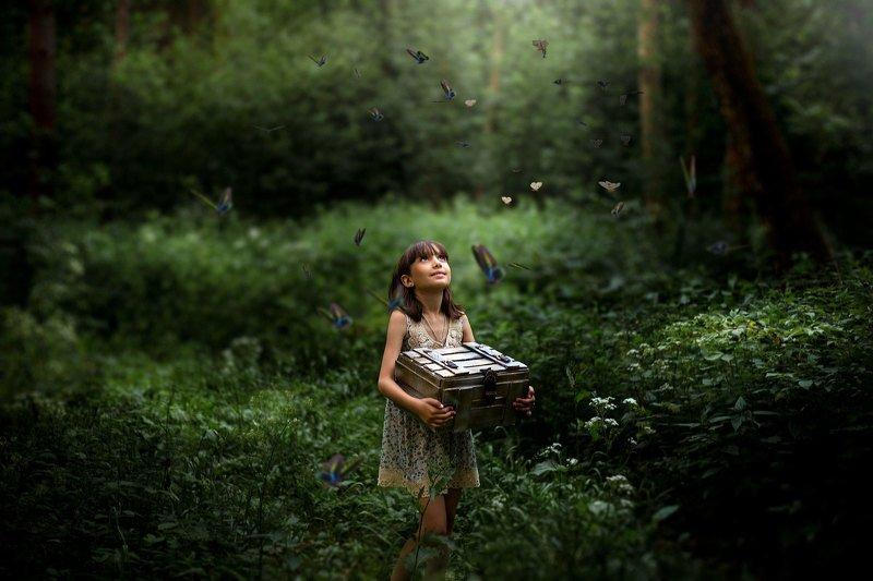 дети сказка лес Сказочный лесphoto preview