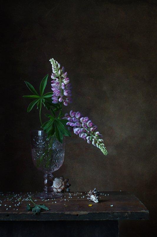натюрморт, цветы, люпины, лето, июнь Два люпина фото превью