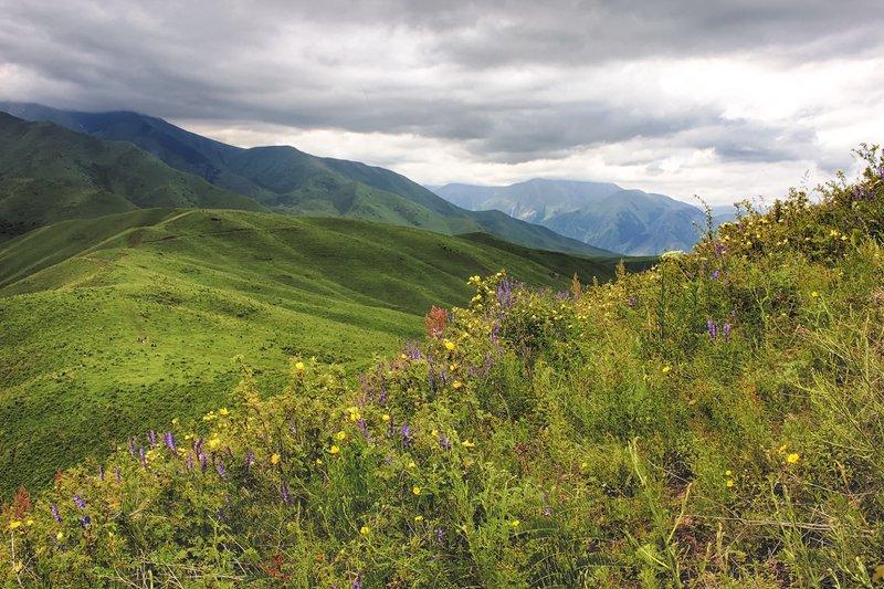 кыргызстан, горы Оттенки июняphoto preview
