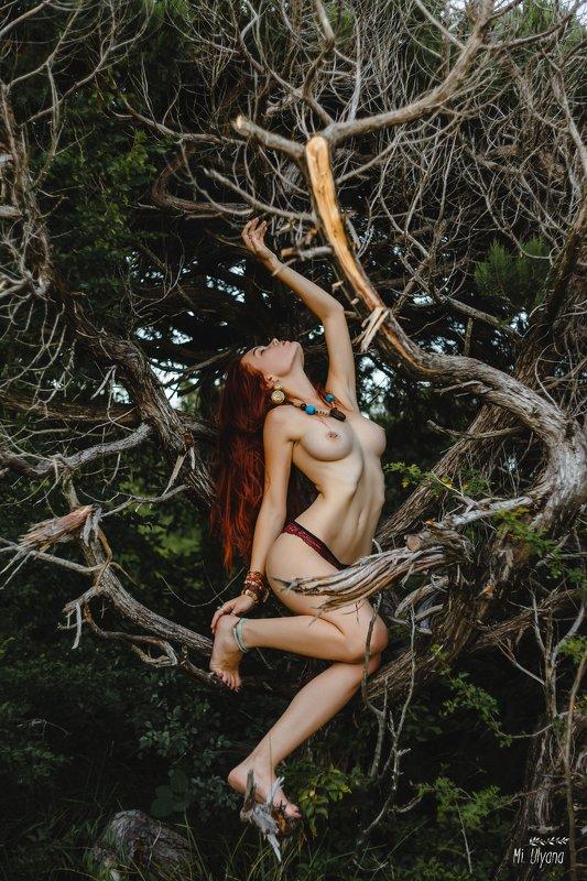 Дитя лесаphoto preview