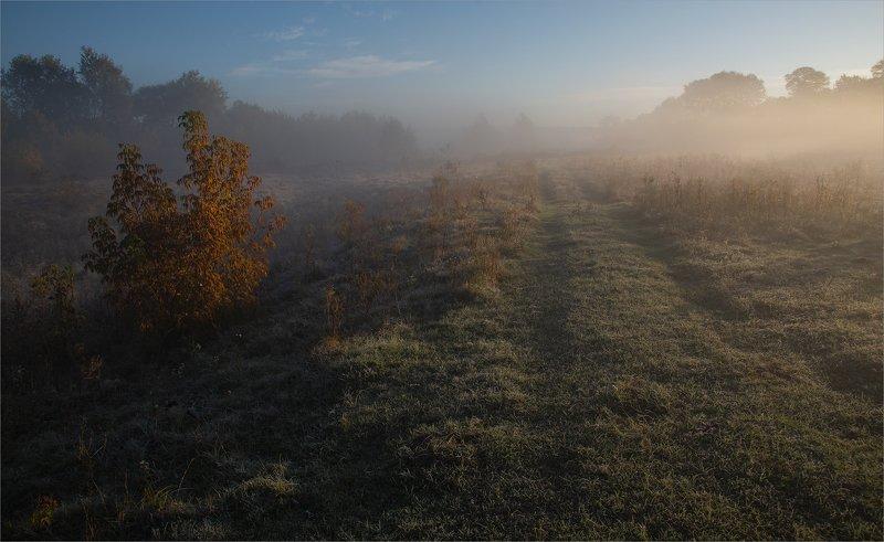 октябрьским утром...photo preview