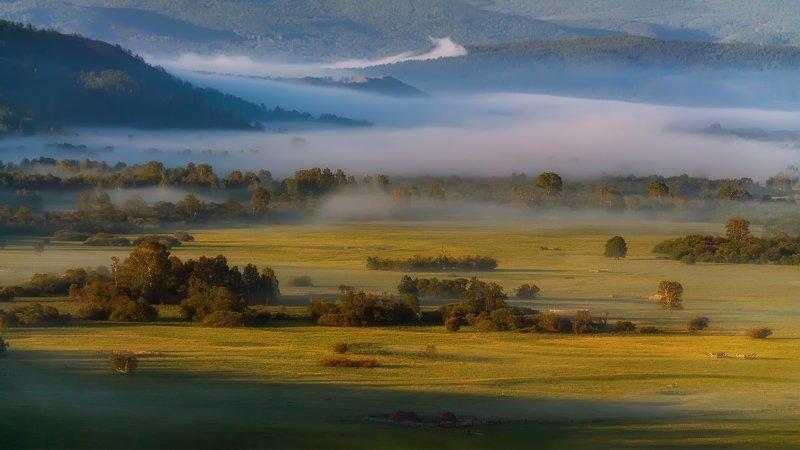 утро, рассвет, восход, туман, лучи Туманная рекаphoto preview