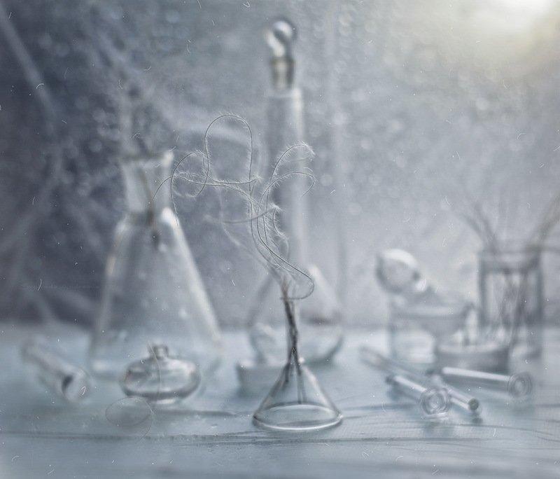 лёгкое утро зимы*photo preview