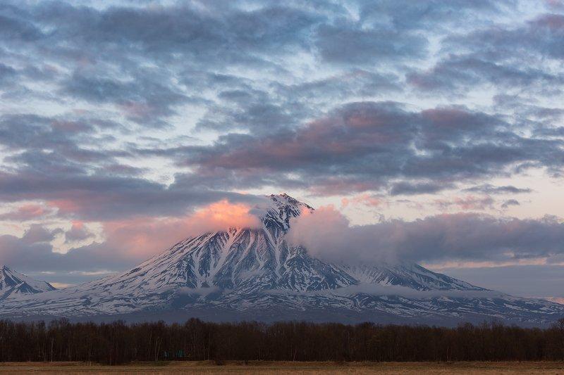 Камчатка, вулкан, Корякский, закат  Корякский исполин photo preview