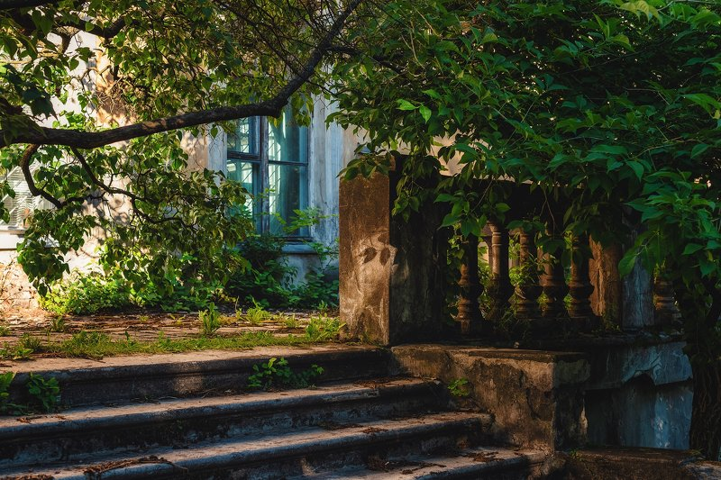 парк город зелень лестница окно уголок лето Забытый уголок большого паркаphoto preview