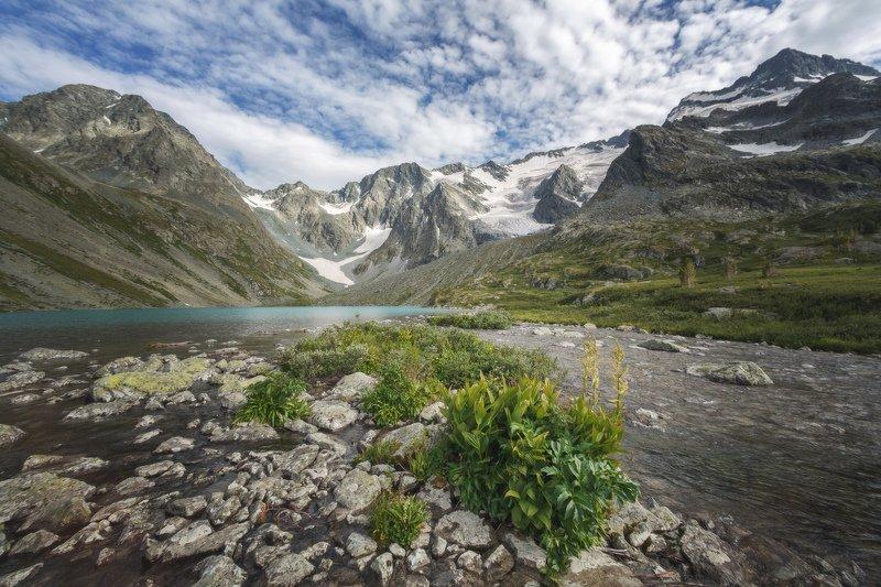 горы, облака, природа, алтай, рассвет, река, путешествие, россия, озеро Богатый мир озера Верхнее Поперечноеphoto preview
