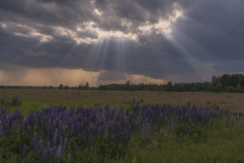 Фототуры с Владимиром Рябковым. Перед грозой.photo preview