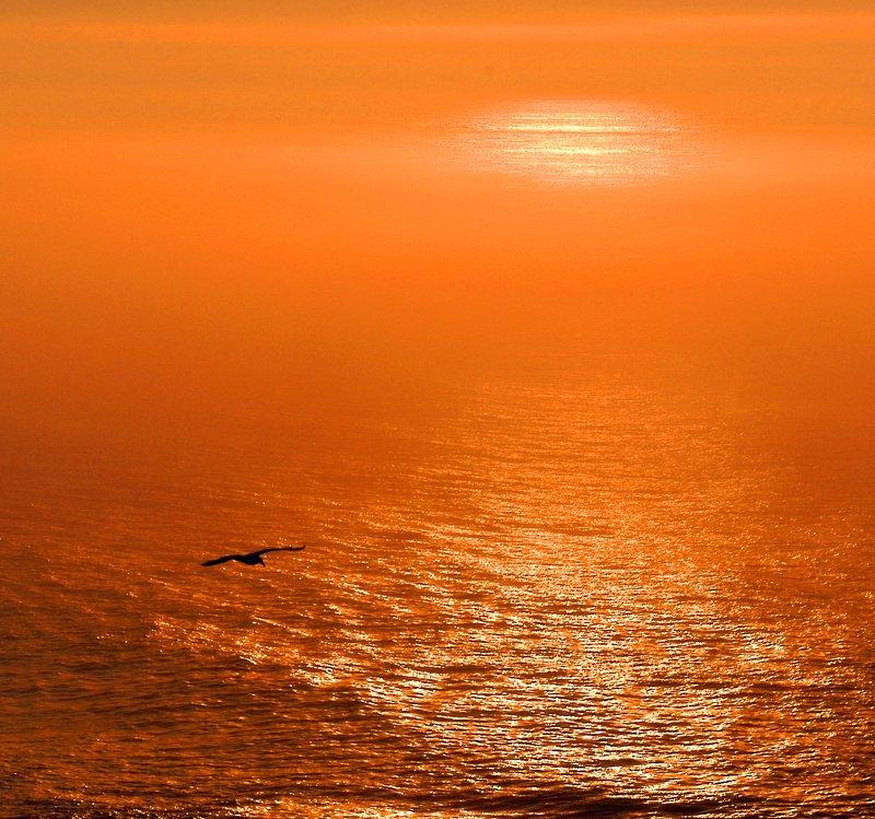 солнечная перспектива  День наубыль пошелphoto preview