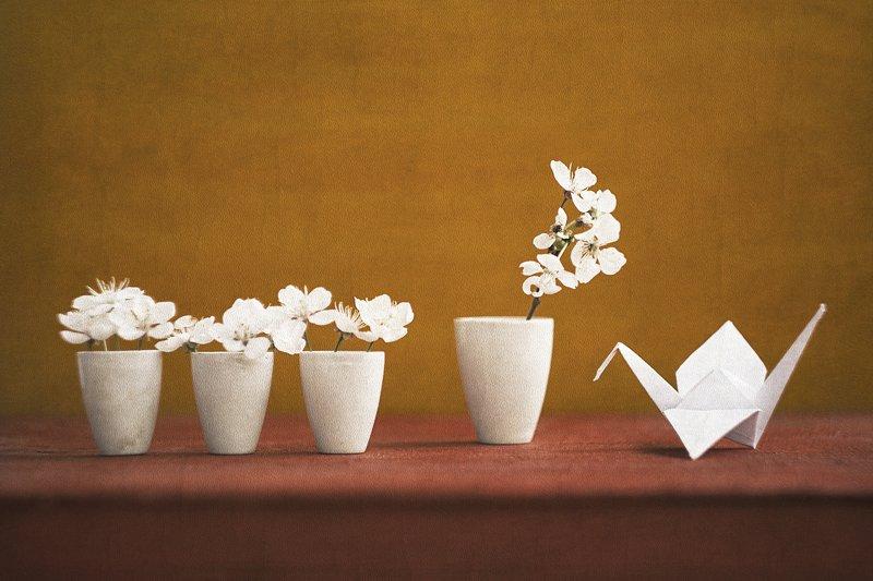 натюрморт, бумажный журавлик, память, япония, садако \