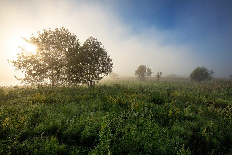 Туманный Альбион. Село Горелоеphoto preview