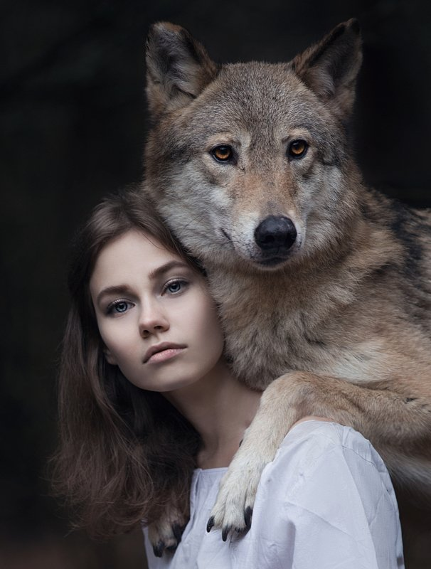 portrait, wolf, girl, woman, girl and wolf Wolf`s daughterphoto preview
