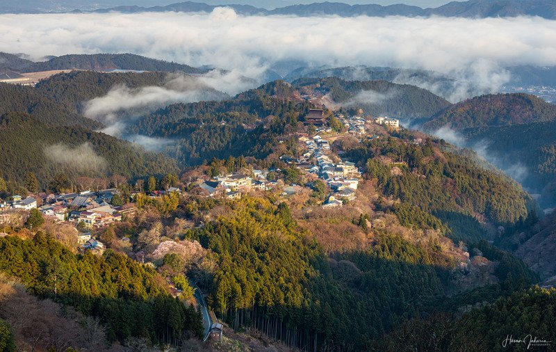 landscape japan nature sunrise  morning travel mountain nara prefecture low clouds foggy Morning Naturephoto preview