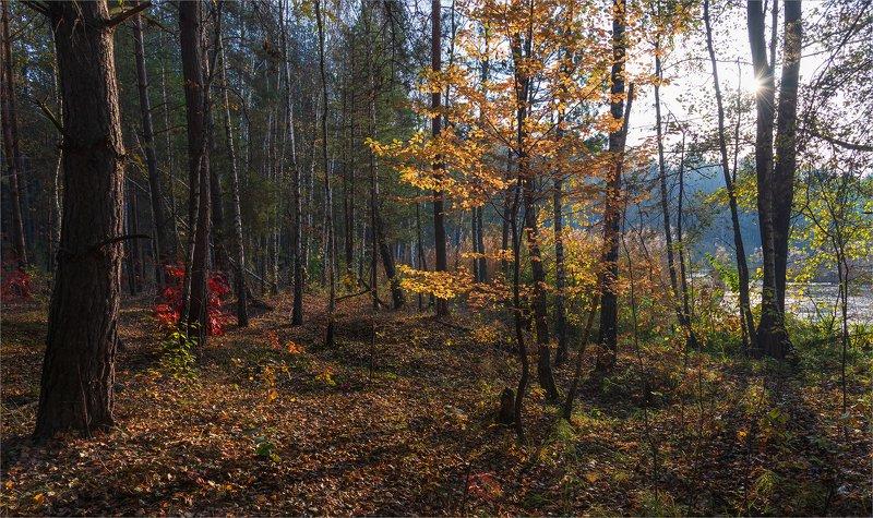 осень на  Голубых озёрах...photo preview