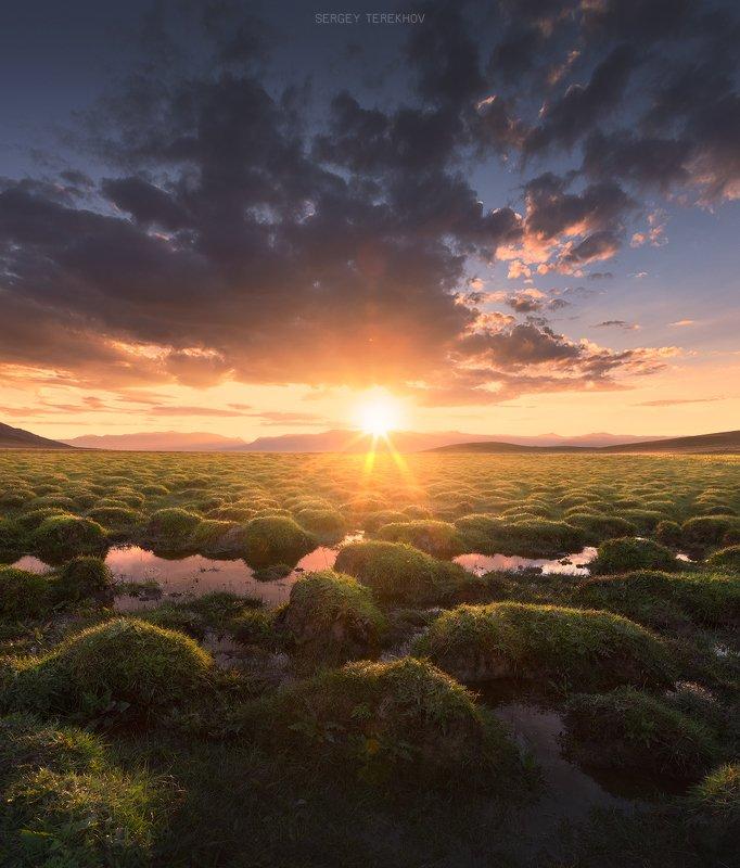 хан-тенгри, тузколь, казахстан, тянь-шань, Кочки озера Тузкольphoto preview