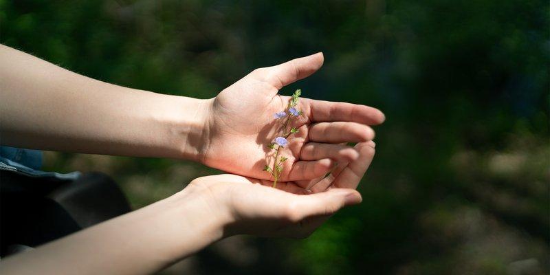 портрет, девушка, нежность, зелень, весна, лето, растение Руками не трогать!photo preview