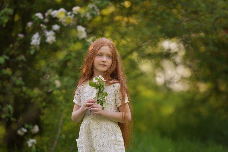 дети, детская фотография, яблоневый сад, яблони, девочка Сады цветутphoto preview
