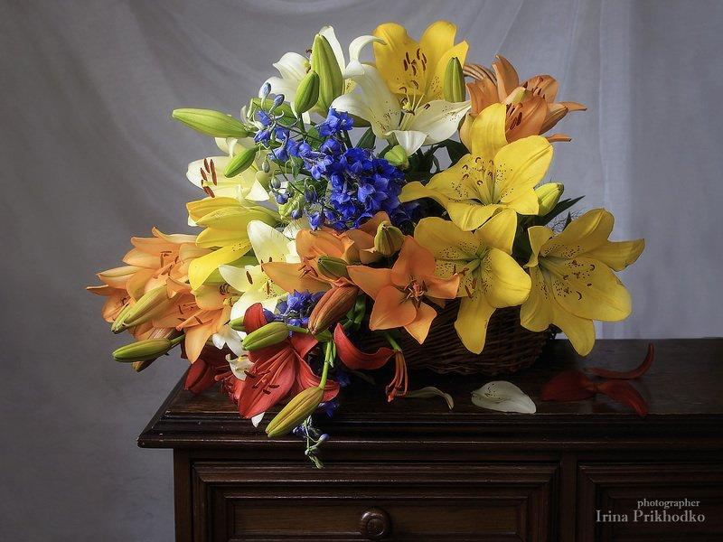 натюрморт, лилии, разноцветные. букет, корзина, лето Флористикаphoto preview