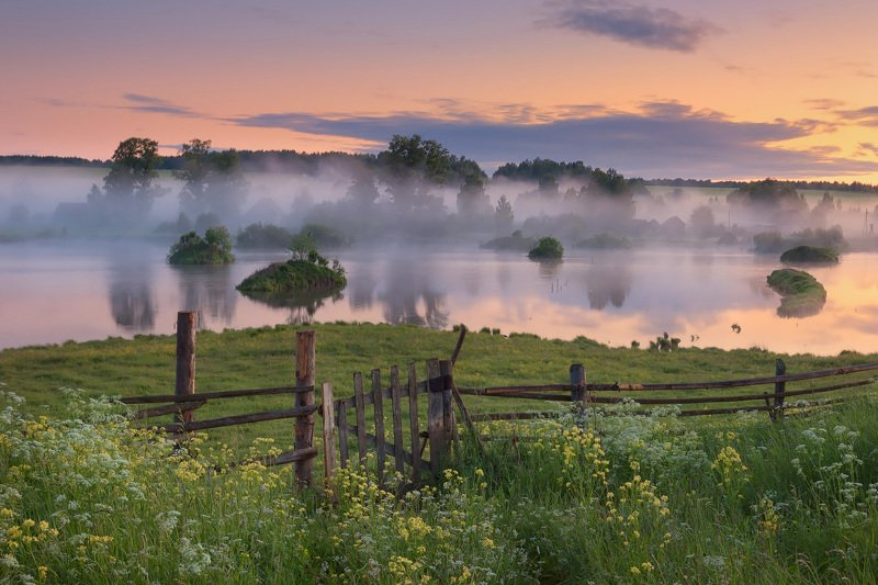 туман, лето, изгородь Дверь в летоphoto preview