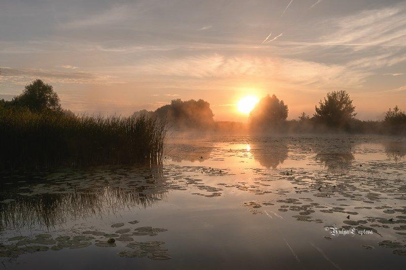 пейзаж,россия,уро,рассвет,лето,река,красота,природа \