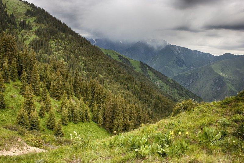 кыргызстан, горы Перед грозой.photo preview